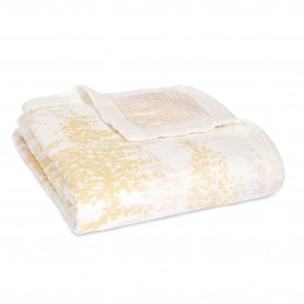 Aden+Anais - Silky Soft Dream Blanket Primrose Birch