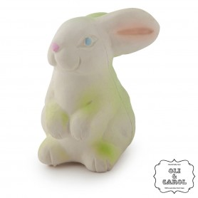 Oli & Carol - Bunny-Teether-Bath Toy