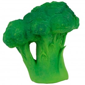 Oli & Carol - Broccoli teether-Bath Toy